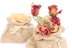 Bouquet of dried withered roses in sackcloth bag on white. Royalty Free Stock Photos
