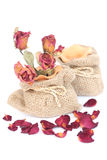 Bouquet of dried withered roses in sackcloth bag on white. Stock Image