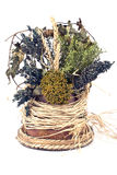 Bouquet of dry herbs Royalty Free Stock Photography
