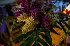 Bouquet du lilas blanc et pourpre sur une table en bois en caf? images stock