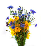Bouquet from ears and field flowers isolated on white background Stock Photos