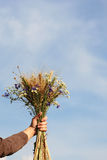 Bouquet of ears of rye and wild flowers in female hands Royalty Free Stock Photo