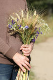 Bouquet of ears of rye and wild flowers i Stock Images
