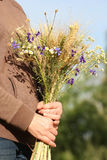 Bouquet of ears of rye and wild flowers i Stock Photos