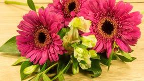 Bouquet en rouge Image libre de droits