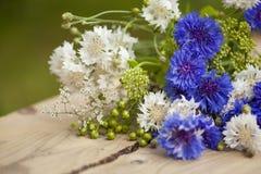 Bouquet estival du nord photos stock