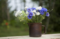 Bouquet estival du nord photo libre de droits