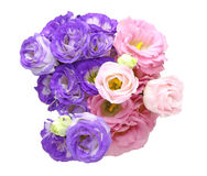 Bouquet of eustoma Royalty Free Stock Photo