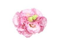 Bouquet of eustoma Stock Image