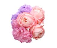 Bouquet of eustoma and rose. Pictured a bouquet of eustoma and rose in a white background Stock Photos