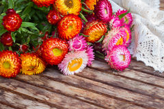 Bouquet of Everlasting flowers on table Stock Photos