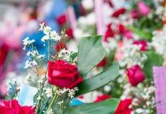 Bouquet fait de roses Images stock