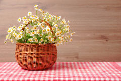 Bouquet of field chamomiles in a wicker basket on the background of wooden wall Stock Images