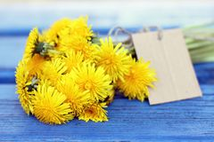 Simple flowers for mom Stock Photography