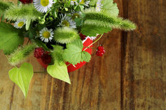 Bouquet of field flowers Stock Images