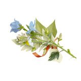 Bouquet of the field wild flowers, easter colors, isolated Royalty Free Stock Photo
