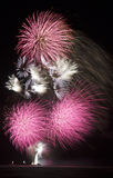Bouquet of pink fireworks Royalty Free Stock Photography