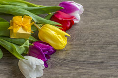 Bouquet of five delicate colored tulips with box gift Royalty Free Stock Photography