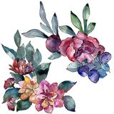 Bouquet floral botanical flower. Watercolor background illustration. Watercolour drawing aquarelle. Isolated bouquet. Bouquet floral botanical flower. Wild stock illustration