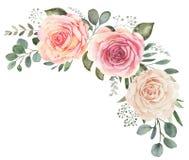 Bouquet floral d'aquarelle avec les roses et l'eucalyptus illustration stock