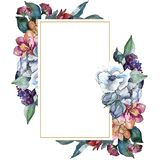 Bouquet floral flower. Watercolor background illustration set. Watercolour drawing. Frame border ornament square. Bouquet floral botanical flower. Wild spring royalty free stock images