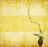 Bouquet of flower and plant in a vase. On a grunge background Royalty Free Stock Photo