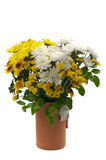 Bouquet in flower vase Royalty Free Stock Images
