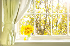 Bouquet of flower on a windowsill royalty free stock photography
