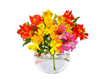 Bouquet of flowers. In a vase Stock Photos