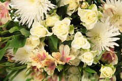 Bouquet flowers Royalty Free Stock Image