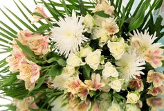 Bouquet flowers. Stock Image