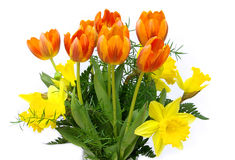 Bouquet of flowers 17. Bouquet of flowers from tulips and daffodils stock photo