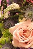 bouquet flowers 免版税库存图片