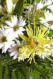 Bouquet of flowers. Beautiful bouquet of mixed flowers white and yellow Royalty Free Stock Photography