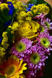 Bouquet. Of flowers Royalty Free Stock Image