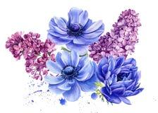 Bouquet of flowers, anemones, lilac, watercolor botanical illustration
