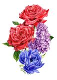 Bouquet of flowers, anemones, rose, lilac, watercolor botanical illustration
