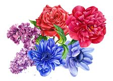 bouquet of flowers, anemones, rose, peony, lilac, watercolor botanical illustration
