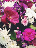 Bouquet of flowers background Royalty Free Stock Photos