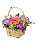 Bouquet of flowers in the basket Royalty Free Stock Photography