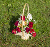 Bouquet of flowers in a basket Stock Photo