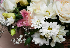 Bouquet of flowers Royalty Free Stock Photos