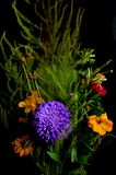 Bouquet of flowers on black background stock image