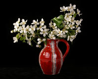 Bouquet of flowers and blossoms of cherries Royalty Free Stock Image