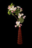 Bouquet of flowers and blossoms of cherries Stock Photo
