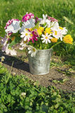 A bouquet of flowers in a bucket Royalty Free Stock Image