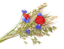 Bouquet of flowers and cereals Stock Photos