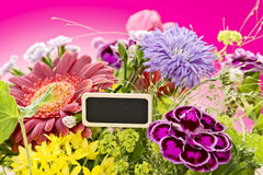 Bouquet of flowers Royalty Free Stock Images