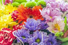 Bouquet of flowers close-up, colorful