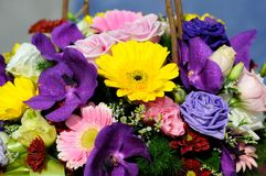 Bouquet of flowers close up Royalty Free Stock Photography